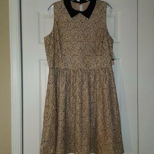 Gibson Latimer Lace Dress